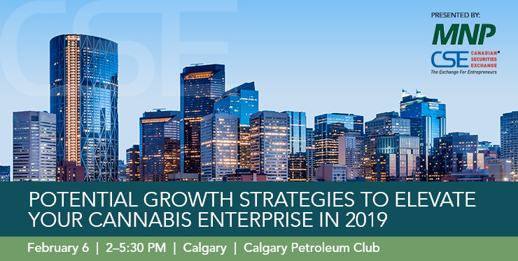 02_06_MNP_Potential_Growth_Strategies_Website