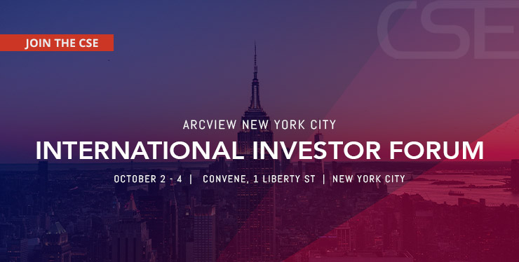 10_02_Arcview_New_York_City_International_Investor_Forum_Website