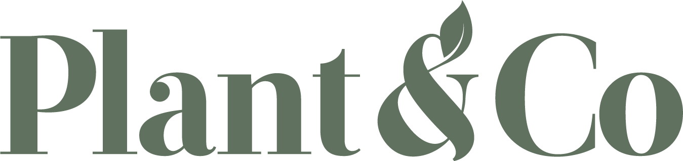 Plant&Co (CSE:VEGN)