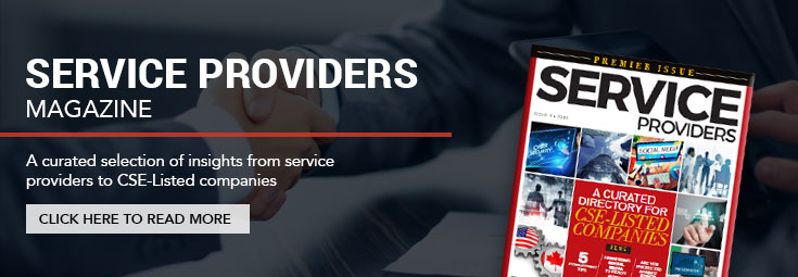 Service Providers Graphic