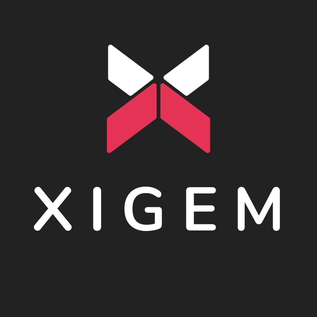 Xigem Technologies Corporation